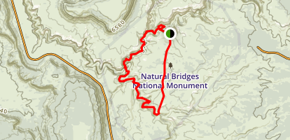 Under the Natural Bridges Loop Map