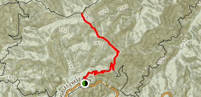 Mount Williamson and Pleasant View Ridge via Pacific Crest Trail Map