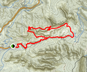 Cow Pies and Hangover Loop Trail Map