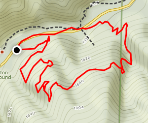 Coulter Pine Trail Map