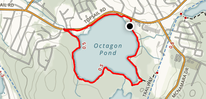 Octagon Pond Loop Map