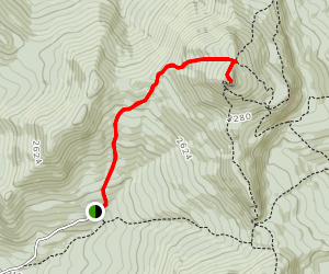 Burrows Trail Map