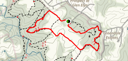 Boundary, Barley Pond, Yellow and Pine Trail Loop Map