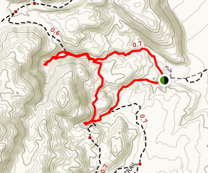 Mountain Palm Loop Map