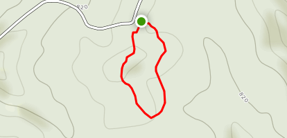 Fire Tower Loop at Bernheim Forest Map