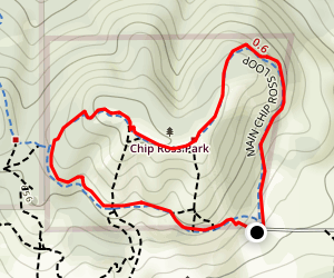 Main Chip Ross Loop Map