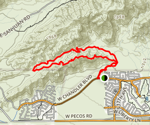Bursera South Loop Map