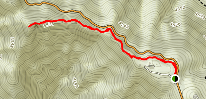 Occidental Peak Map