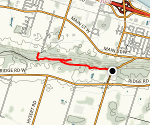 Bruce Trail from Wolverton Road Map