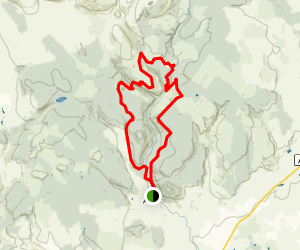 Ae Forest Loop Map