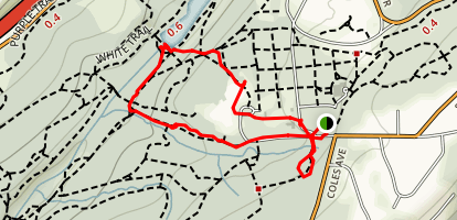 Orange Trail and Purple Trail Loop to Lake Surprise Map