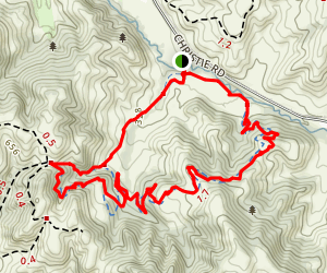 Black Phoebe, Whipsnake, and Windmill Trail Loop Map