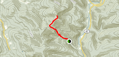 Balsam Mountain Via Oliverea-Mapledale and Pine Hill-West Branch Trail Map