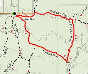Pink Hill, Loma Verde, Cholla Trail, and Cactus Forest Loop Map
