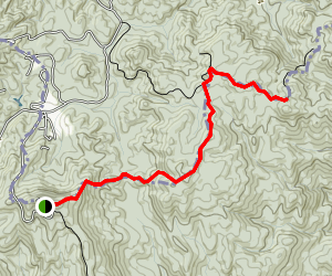 Sassafras Gap to Whiteoak Mountain and Bigspring Mountain Map