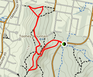 Mayne Ridge Track to Fimbrata Track Map