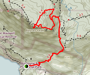 Baynes Peak via Armand & Girlfriend Trail Map