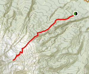 Cooper Spur Trail via Tilly Jane Trail Map