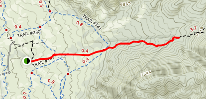 Pino Trail Short Version Map