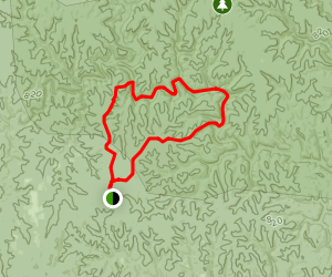 Randolph and Sipsey Loop Trail Map