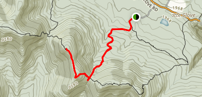 Devil's Path to the Jimmy Dolan Notch Overlook and Twin Mountain Summit Map