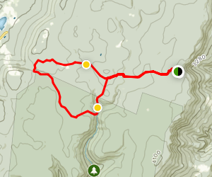 Blackbird Knob Trail Loop Map