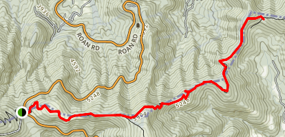 Appalachian Trail: Carver's Gap to Yellow Mountain Gap Map