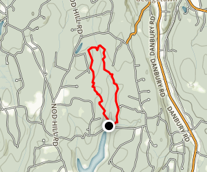 Wilton Town Forest Blue Trail Map