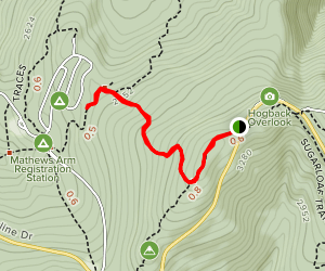 Overall Run Trail Map