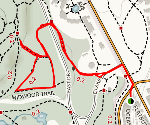 Midwood Trail from the Prospect Park Station Map