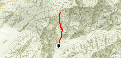 Packhorse Hut Via Kaituna Valley Track Map