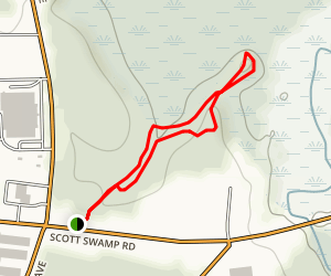 Shade Swamp Sanctuary Blue Trail Map