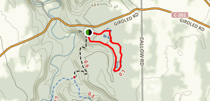 Surveyor's Woods Loop Trail Map