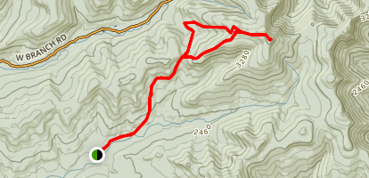 Wittenburg Slide Trail via Phoenicia-East Branch Trail Loop Map