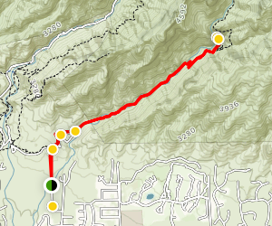 Bear Canyon Trailhead to Bear Canyon Trail to Seven Falls Map