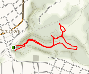 Williamsport Falls Loop Hike Map