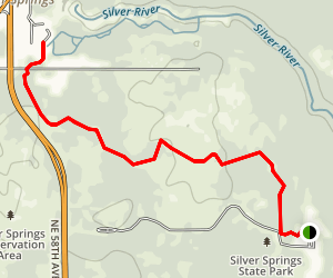 Spring Trail Map