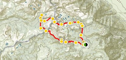 Cottonwood Pass / New Army Pass Loop Map