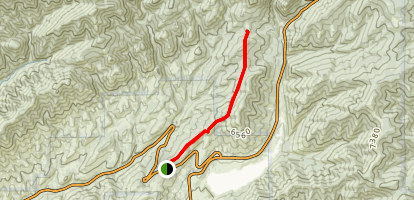 Little Mountain Ridge Trail Map