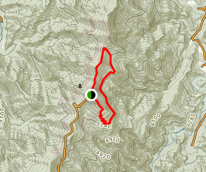 Mount Mitchell Loop Map