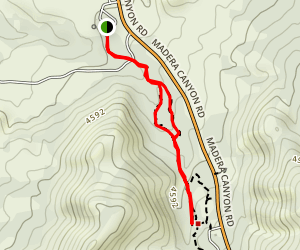 Proctor Road Nature Trail Map