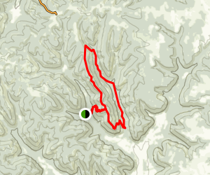 Pike Forest Map