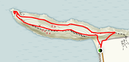 Brean Down Fort Map