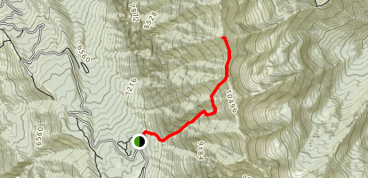 Upper Poe Coulior Trail to Cascade Mountain Summit Map