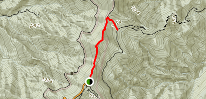 Big Tom Gap Spur Trail via Black Mountain Crest Trail Map