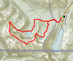 Akamina Pass and Wall and Forum Lake Trail Map