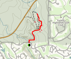 Forest Trail Map