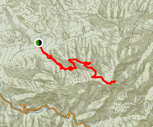 Mount LeConte via Rainbow Falls Trail Map