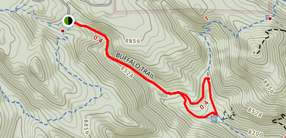 Buffalo Trail Map