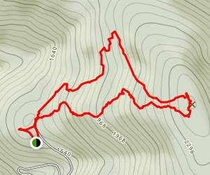 Belknap Fire Tower (Red/Green Loop) Trail Map